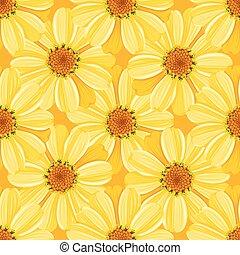 padrão, margarida, seamless, -, floral