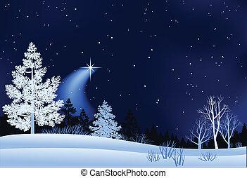 paisagem, inverno, ilustração