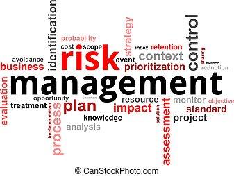 palavra, gerência, -, risco, nuvem
