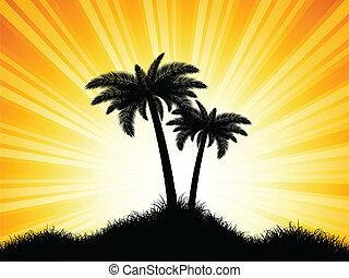 palma, silhuetas, árvore
