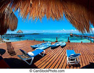 paradise., trópico, mujeres, méxico, férias, isla