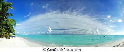 paraisos , tropicais