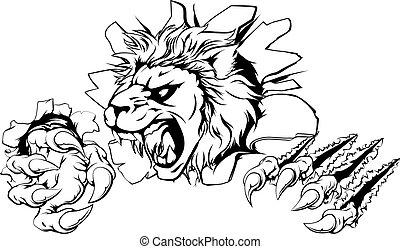 parede, arranhe, leão, através