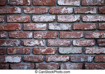 parede, tijolos