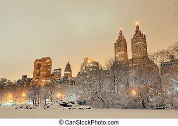 parque central, inverno