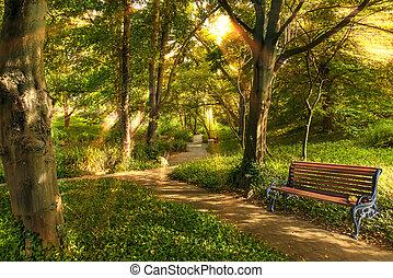 parque, light., manhã