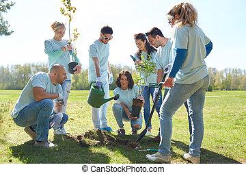 parque, plantar, voluntários, grupo, árvore
