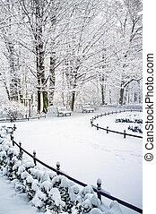 parque, tempo inverno