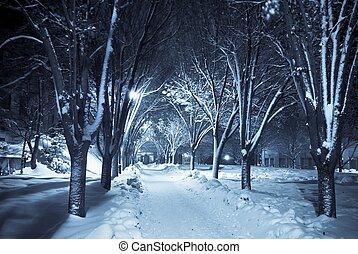passagem, silencioso, neve, sob