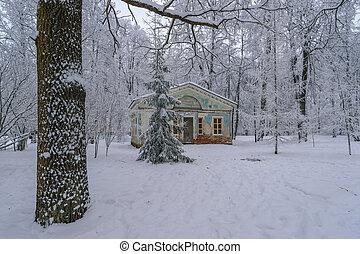 pavilhão, antigas, parque, inverno
