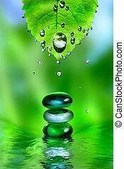 pedras, folha, água, equilibrar, fundo, spa, verde, gotas, brilhante