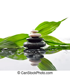 pedras, piramide, folhas, zen, superfície, verde, sobre, waterdrops