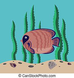 peixe, vermelho