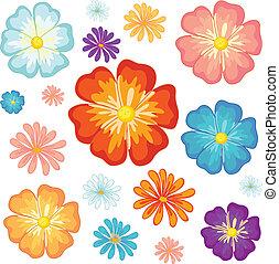 pequeno, grande, flores
