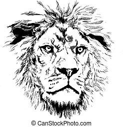 pequeno, leão, mane
