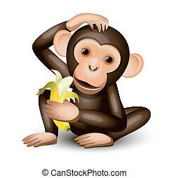 pequeno, macaco