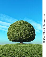 perfeitos, árvore