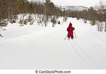 pessoas, esquiando, (4, anos, floresta, incluindo, criança, pequeno, vários, old).