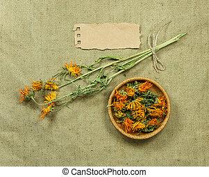 phytotherapy, herbs., medicina, calendula., herbário, medicinal, secado