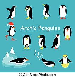 pingüim, experiência., caricatura, cobrança, azul, isolado