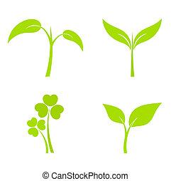 planta, ícones