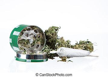 planta maconha, marijuana, secado