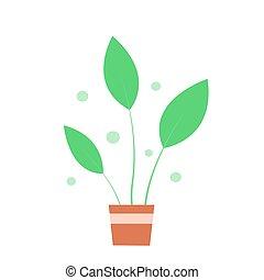 planta pote, experiência verde, branca, indoor