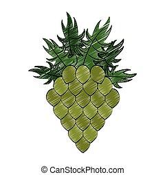 planta, rabisco, isolado, pulo