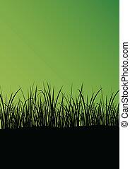 plantas, detalhado, silueta, abstratos, ilustração, vetorial, experiência verde, capim, paisagem