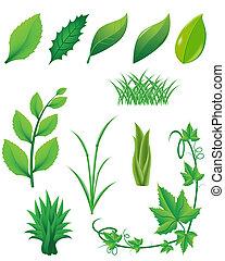 plantas, folhas, jogo, verde, ícone
