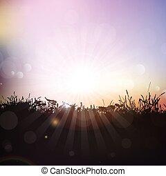 plantas, silueta, céu, contra, pôr do sol, capim