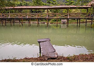ponte, madeira, árvore, passeio