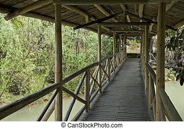 ponte madeira, corredor