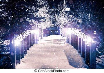 ponte, parque, inverno