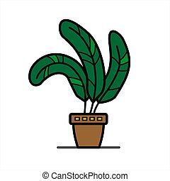 pot;, lar, flor, folhas, branca, argila, largo, tropicais, herb;, fundo, isolado, planta