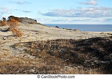 praia areia, duna