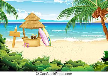 praia, pacata
