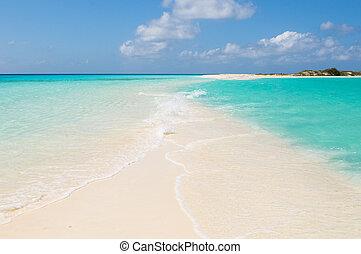 praia, roques, tropicais, los, venezuela, ilhas