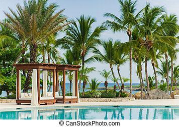 praia, tropicais, piscina, férias, natação, verão, -, experiência.