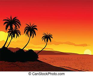praia tropical, ilustração