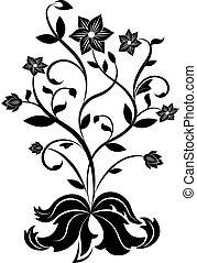 pretas, flor branca, desenho, element.