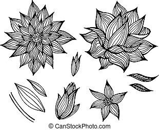 pretas, flores, vetorial, jogo