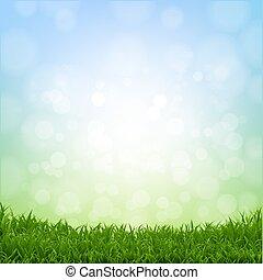 primavera, capim, borda