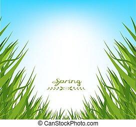 primavera, capim, fundo, fresco