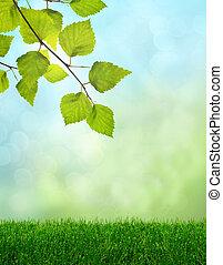 primavera, capim, verde, fantasia