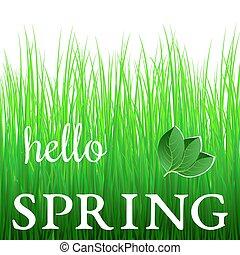 primavera, verde, frase, branca, capim, olá