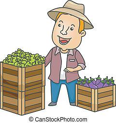 produto fresco, agricultor