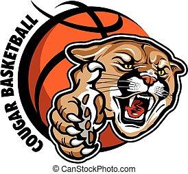 puma, basquetebol