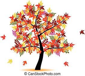 quatro, estação, outono, -, árvore