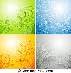 quatro estações, diferente, árvore